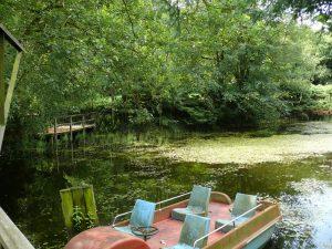 VERMIETET 2012: Freizeitgrundstück mit Teich in 22955 Hoisdorf